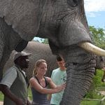 hazyview-elephant-sanctuary-side-4