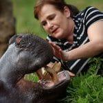 jessica_hippo